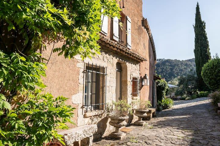 Chambre d'hôte au milieu d'une oliveraie