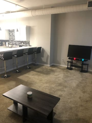 Nice cozy apartment in downtown Cleveland