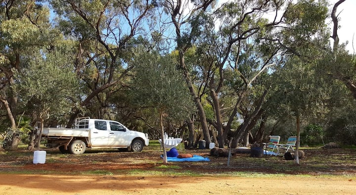 BLUE WREN CAMP SITE MOORA trees level 2wd access
