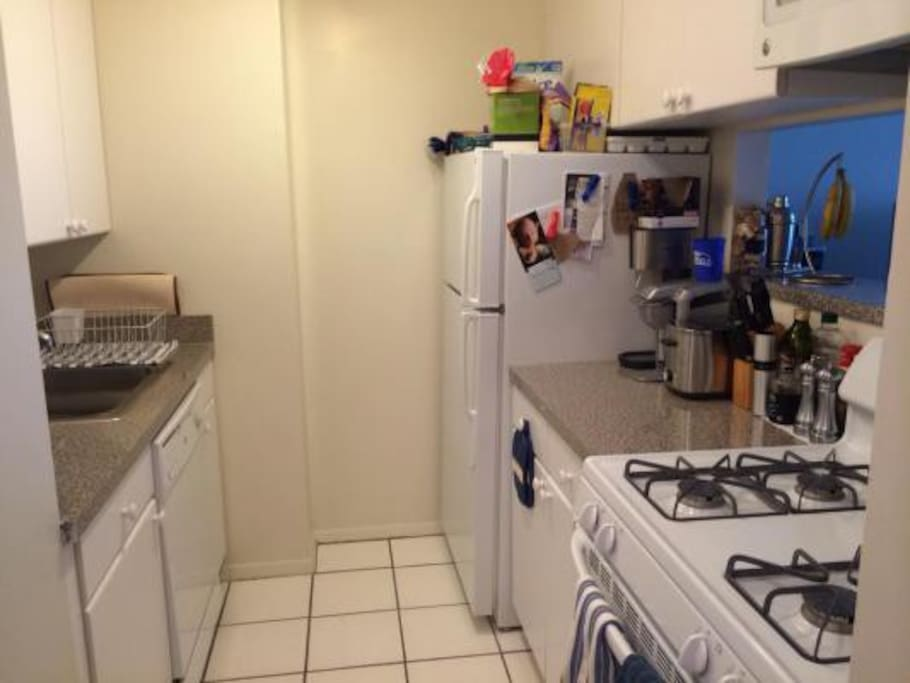 Kitchen with dishwasher, oven, full fridge, etc.