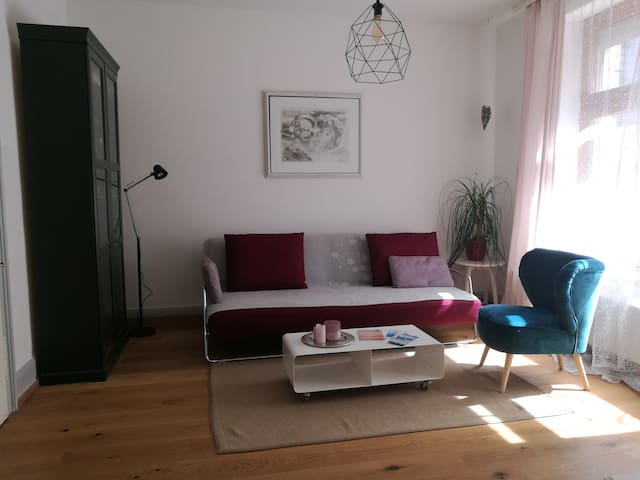 Cosy apartment in the heart of Bregenz