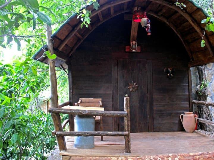 Antik Bungalov - Antik Vadi Kazdaglari Bungalow Evleri