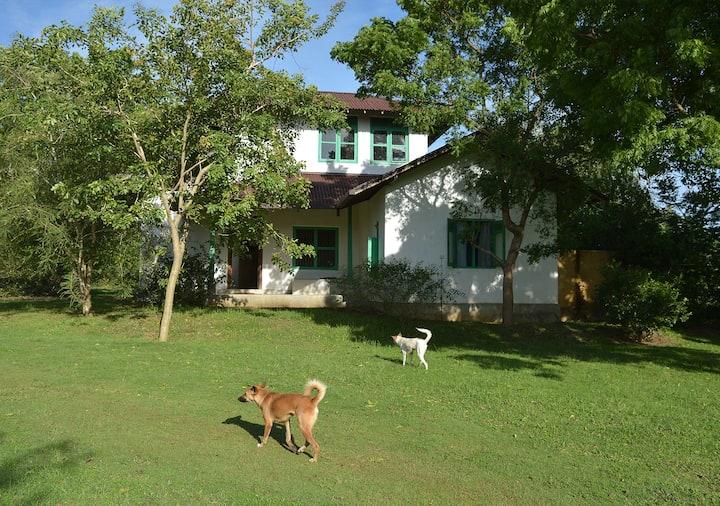Rustic Eco-Villa on Farm Stay w/ Ayurveda & Lagoon