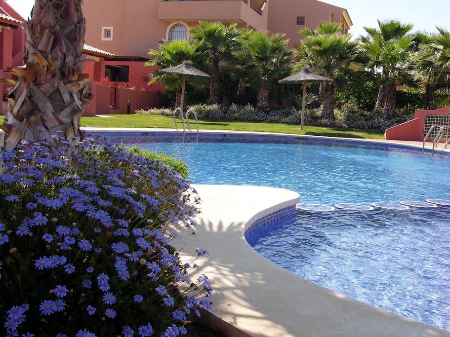 Gran casa terraza y jard n wifi gratis piscina casas for Casa jardin murcia