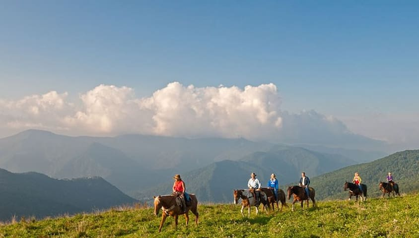 Horseback riding available at Cataloochee Ranch - reservations required.  Age limits apply.