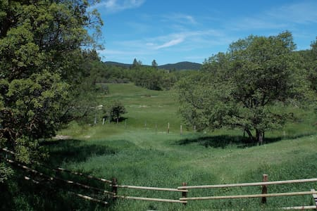 """Deer & Antelope Play"" Cabin with vast ranch views"