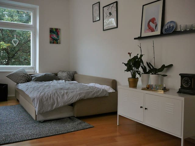 Bright and lovely flat in the city center - 慕尼黑 - 公寓