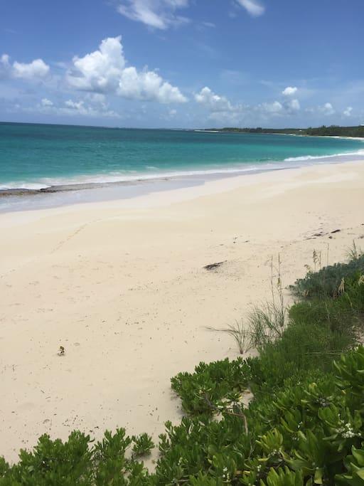 Beautiful Cayo Loco beach day!
