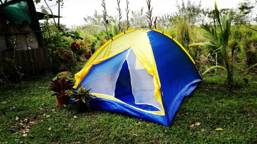 Camping,Ecological farm available. 1