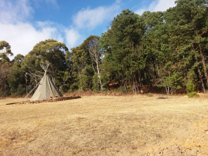 Brown Earth Tipi Fields