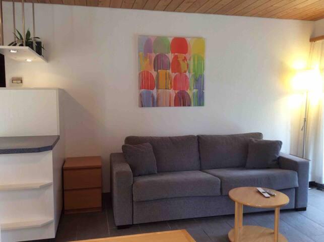 Sofa / Sofa-Bett / sofa / sofa-bed
