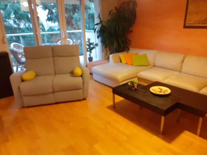 - luxury pent house in peaceful area near  center