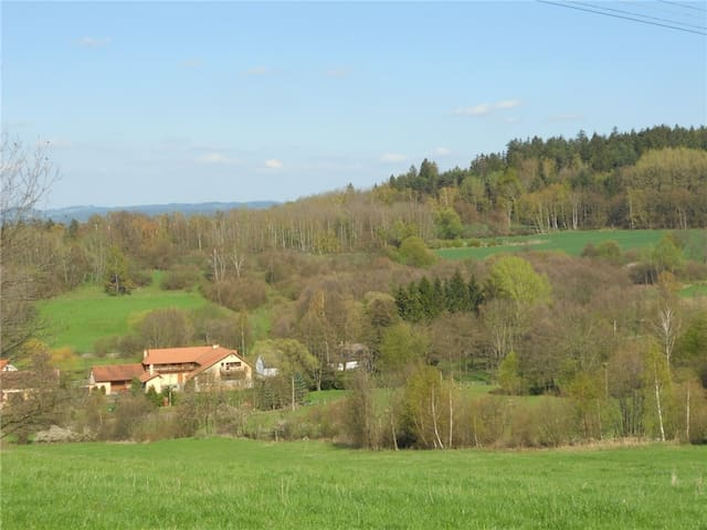Family farm in Central Bohemian Region - 1 - Sedlec-Prčice - Bed & Breakfast