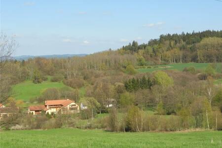 Family farm in Central Bohemian Region - 1 - Sedlec-Prčice - Bed & Breakfast