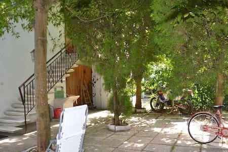 Villa con giardino a 100m dalla spiaggia - Lido di classe  - วิลล่า