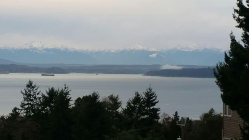 Paradise View - Seattle - Leilighet