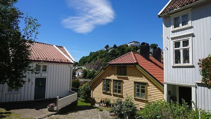 Sentrum av Arendal:Tyholmen: The heart of Arendal.
