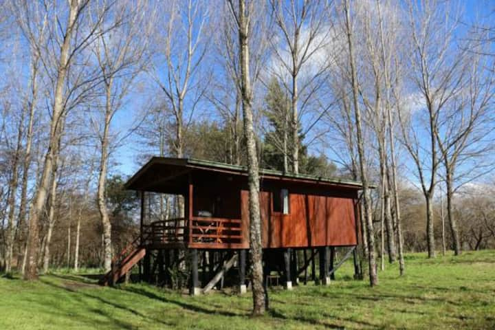 Cabaña Matrimonial Sur