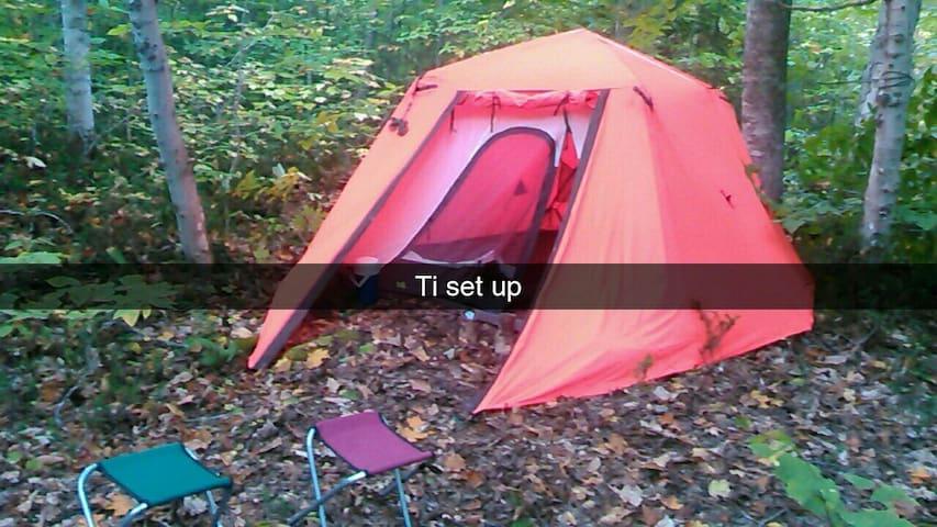 Tent in the restigouche forest.