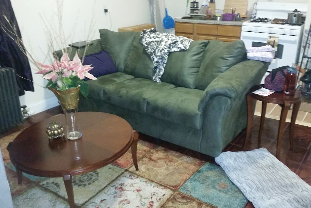 Family sized couch separates kitchen from living room