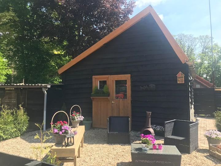 Veluwse Bos Studio gelegen in Otterlo