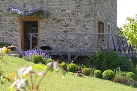 Gîte des Moineaux (Sparrows' Barn) - Champagnac-le-Vieux - 獨棟