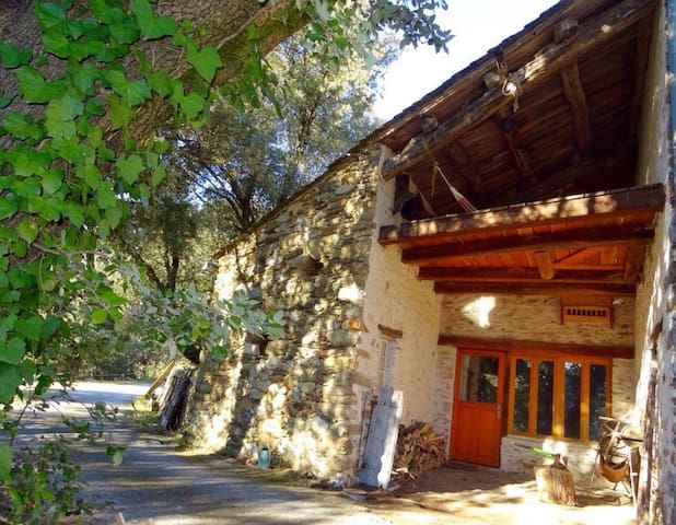 The Old Dairy, cool and cosy in the Haut Languedoc - Prémian - Casa