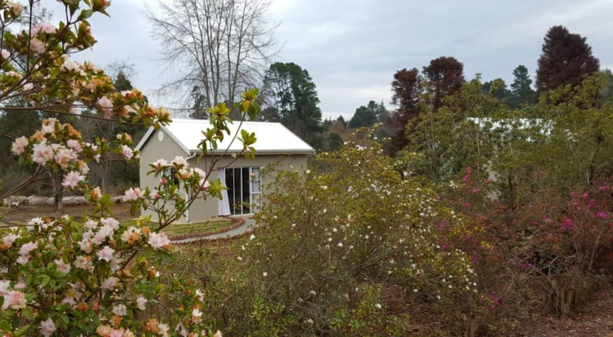 Liquid Amber Garden Cottages 2