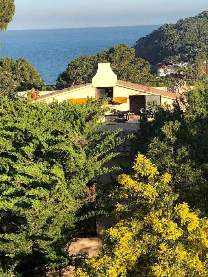 Villa dans crique catalane calme et magnifique