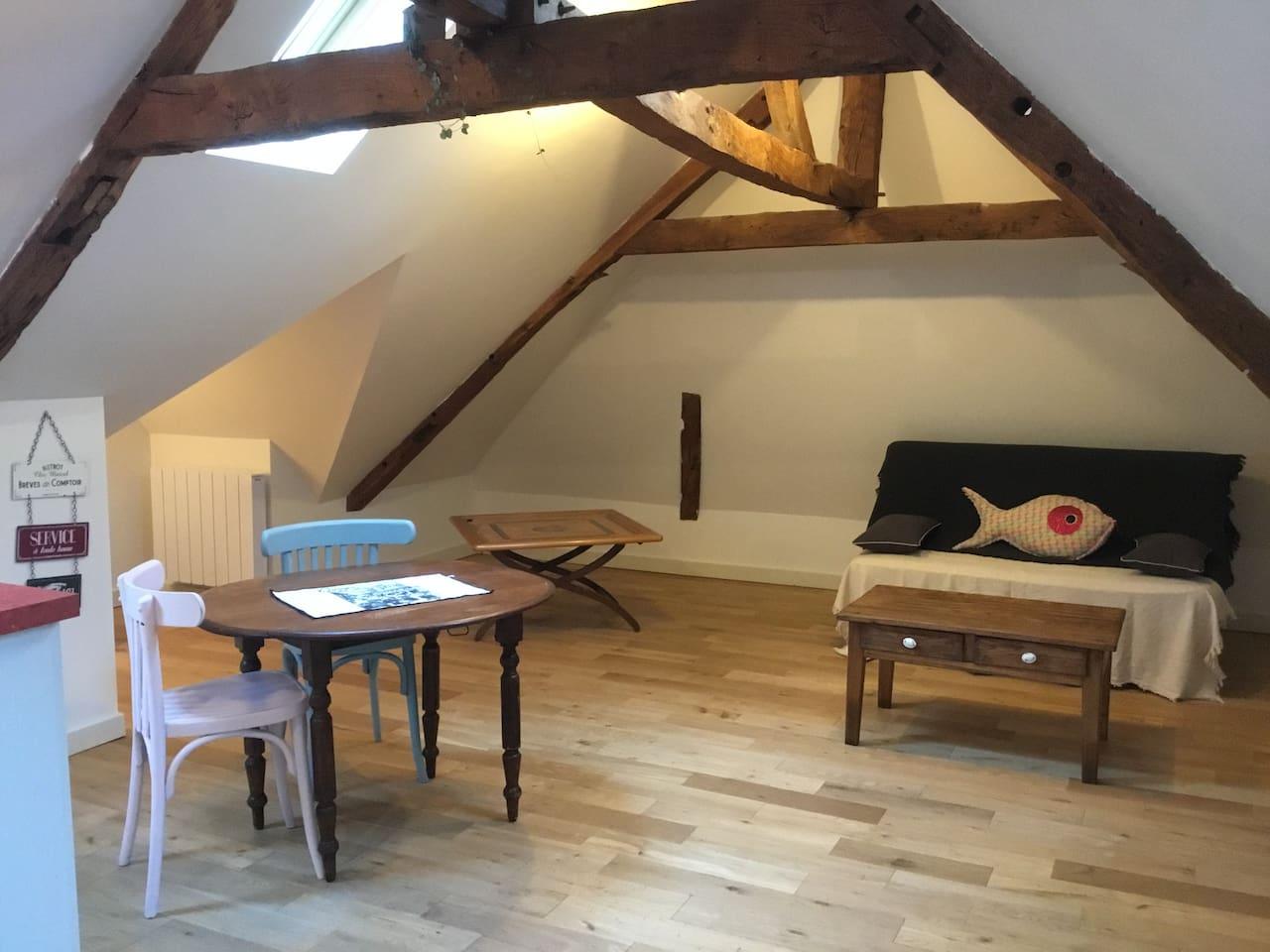 Salon spacieux avec canapé lit