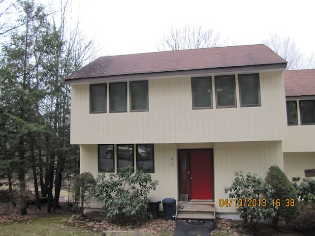 Home with pool and tennis court - Roxbury - Casa