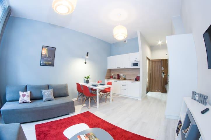Smart Aps Apartament Moniuszki 5/4C, Katowice