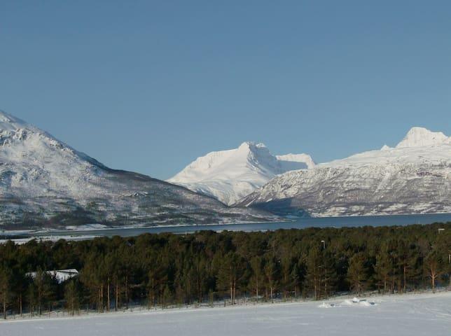 Fantastisk utsikt mot nordlyset. - Skibotn