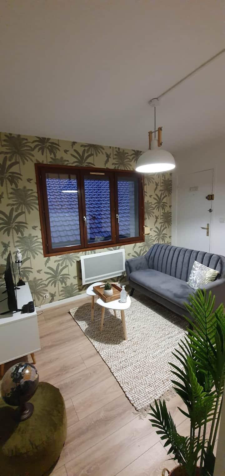 Appartement cosy proche centre d'Amiens 1 étoile ⭐️