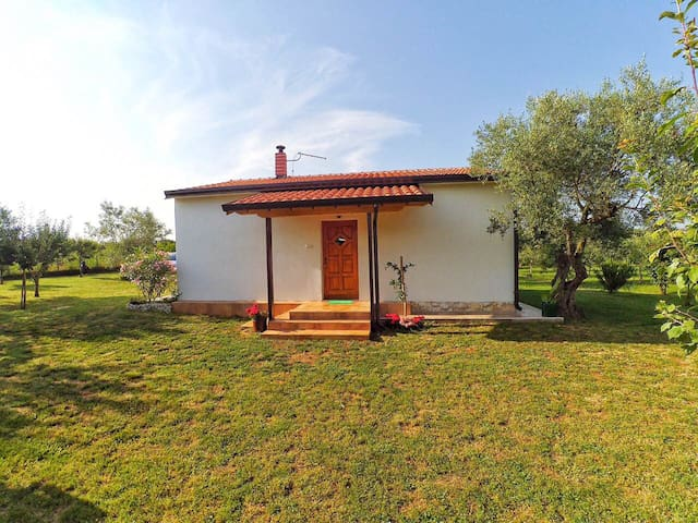 Holiday Home Lovrić - Novigrad - Hus