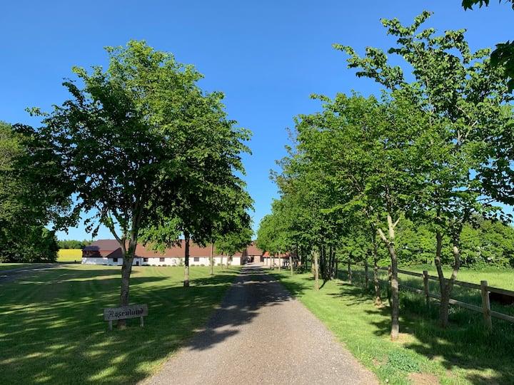 Bondegårdsferie i Silkeborg (Gudenåfredningen)
