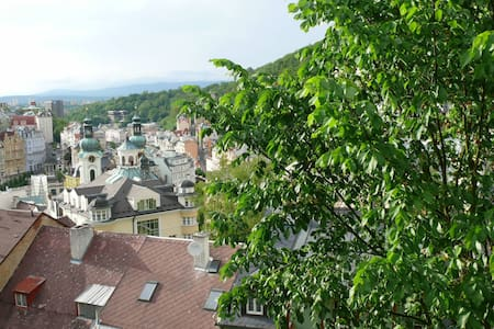 Hostel with amazing view. 3 rooms for 7 people - Karlovy Vary - Loft