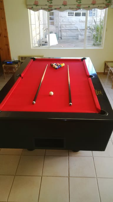 spend some time with your family and friends and enjoy a game of pool.