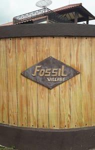 Fossil village