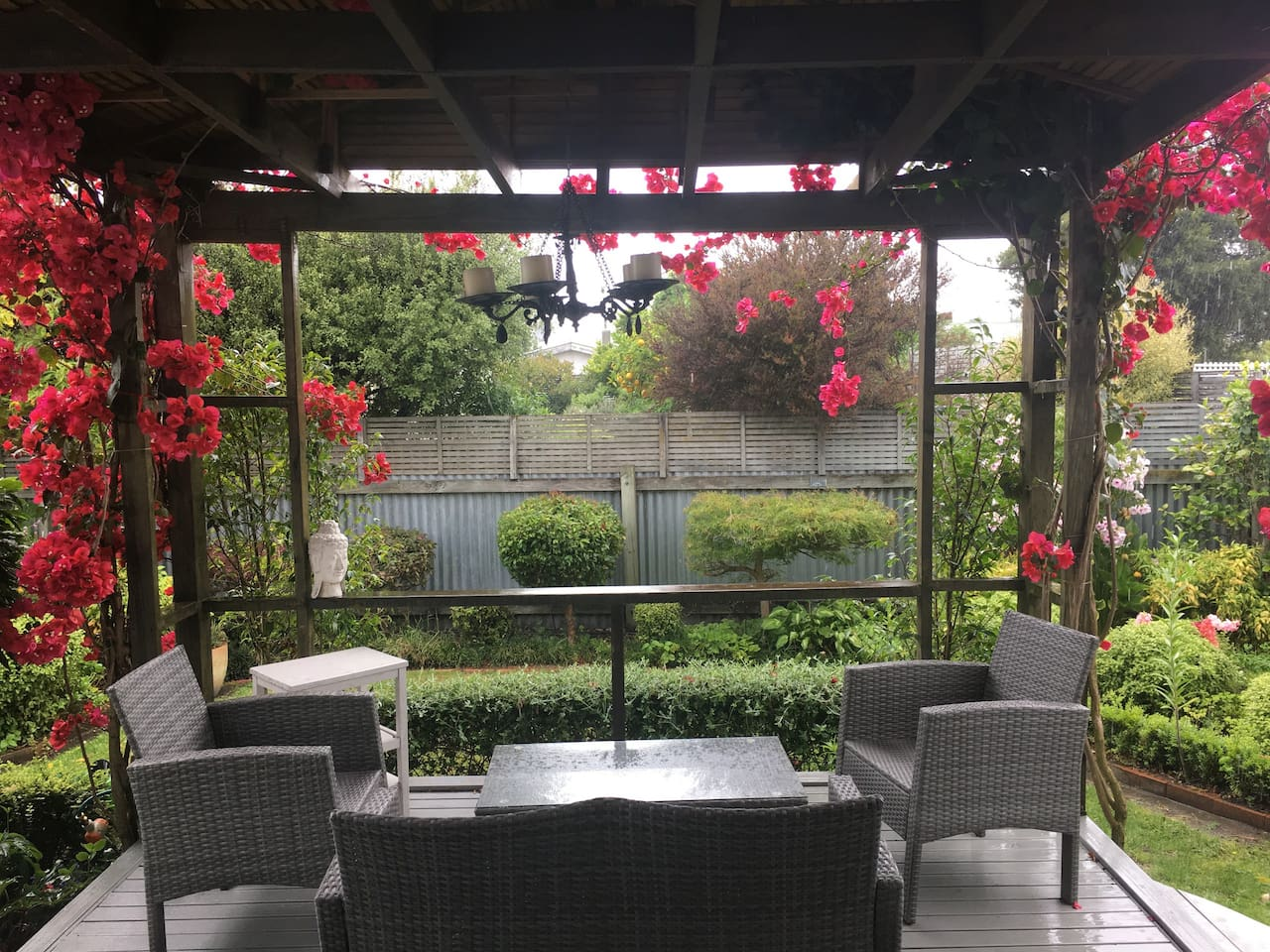 Back deck with bougainvillea.
