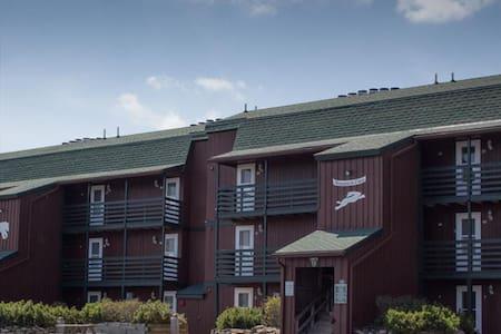 Cozy ski studio loft condo - Condominium