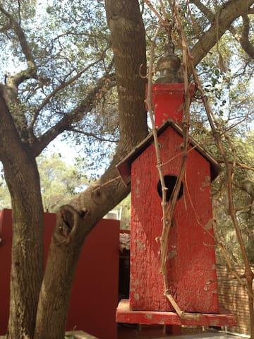 Villa Bohemia en Tecate - Tecate