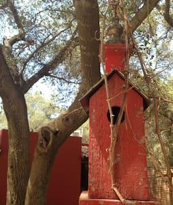 Villa Bohemia en Tecate - Tecate - Přírodní / eko chata