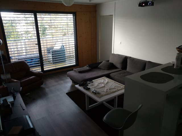 Appartement T2 cosy au raincy - Clichy-sous-Bois - Apartment