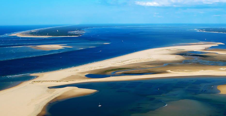 T2 4-5p  50m plage sud / Grande terasse / piscine - Biscarrosse - Apartment