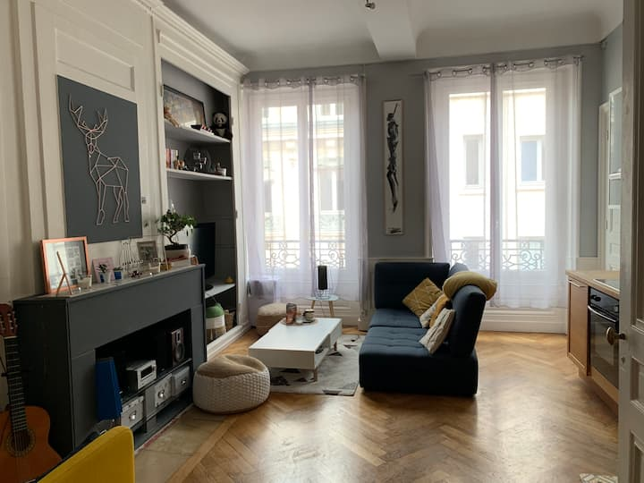 Cosy apartment, Lyon downtown