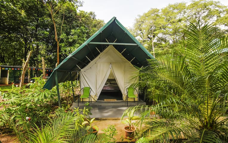 Glamping close to best beaches in Guanacaste