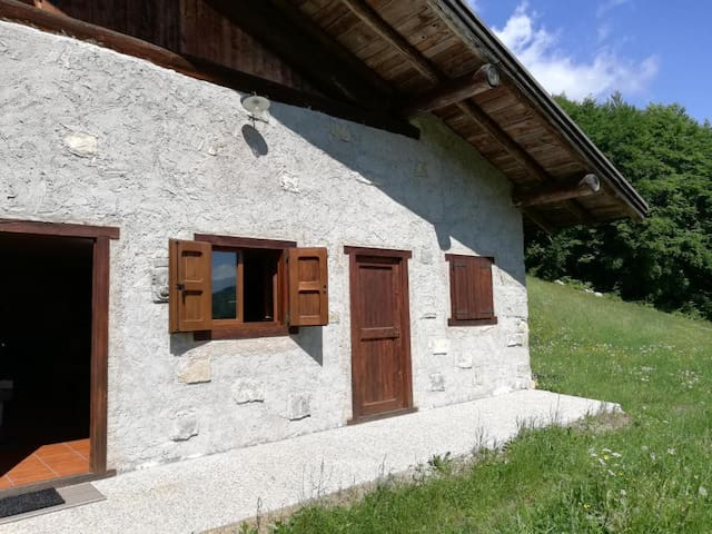 "Beautiful Holiday Home ""Baita Rustica immersa nel verde"" with Mountain View; Pets Allowed, Parking Available"