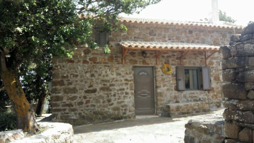 Selitsa house