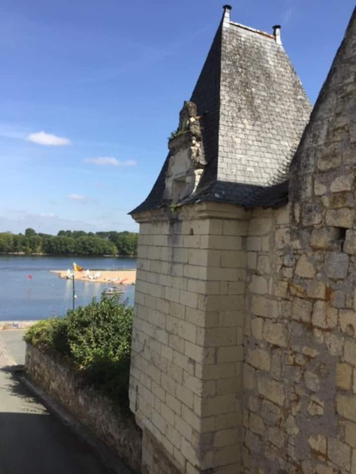 Magnifique maison, 2 ch., patio, vue sur la Loire.